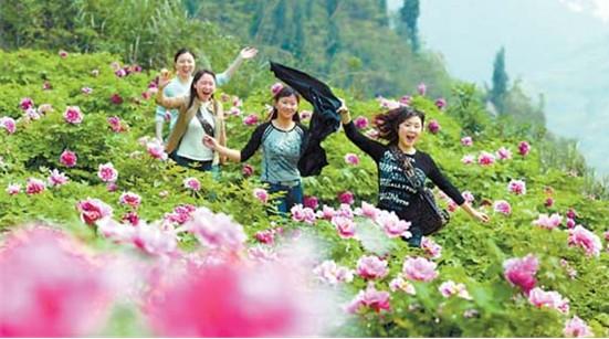 垫江牡丹节_在垫江牡丹节早期策划人高立明看来,从旅游产业的属性上看,消费体验