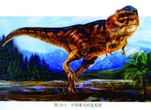 暴龙也就是通常说的霸王龙-从 恐龙家园图 盘点全国各地恐龙化石