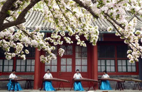 月下海棠的古筝谱子
